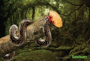 animal-rights-social-ads-call-of-the-wild-sanctuary-asia-3